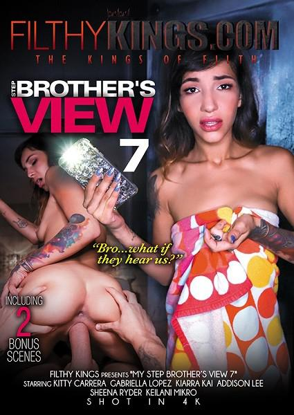 Step Brother's View 7 Box Cover