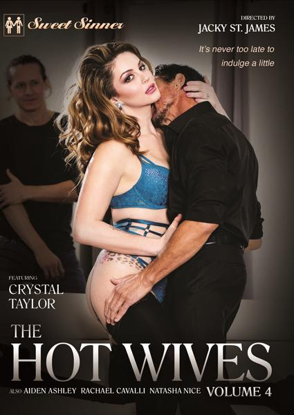The Hot Wives 4 Box Cover