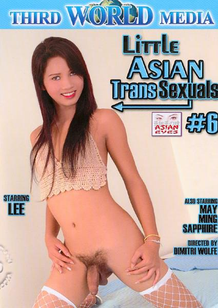 Little Asian Transsexuals #6 Box Cover